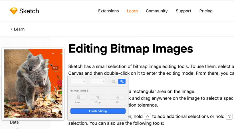 Editing Bitmap Images